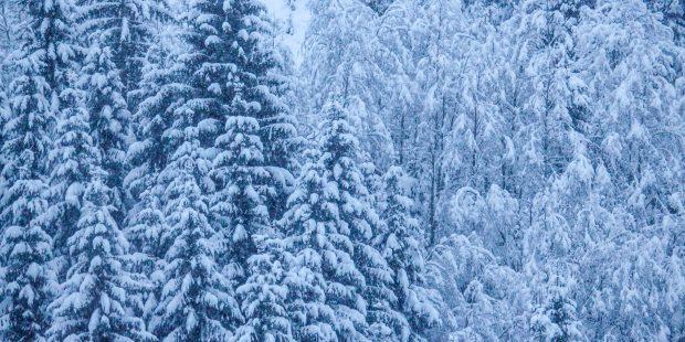 Het wordt extreem koud: kleed jezelf goed