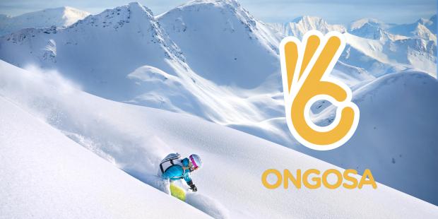 Ongosa: online skischool voor zelfstandigen