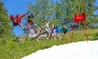Zomerskiën, Skishow